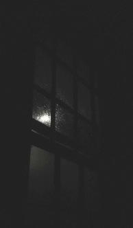 moonlight1.jpg