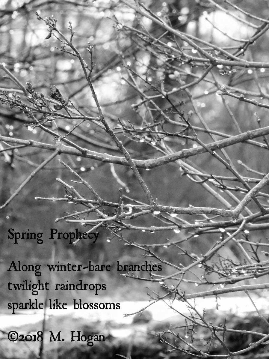 Spring Prophecy.jpg