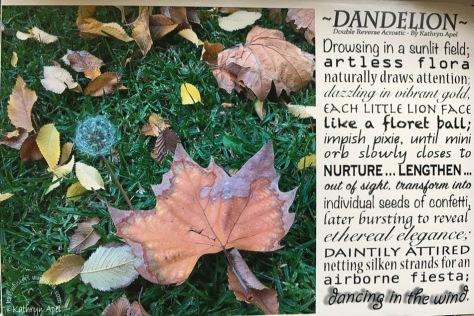 dandelion double reverse acrostic (1).jpg