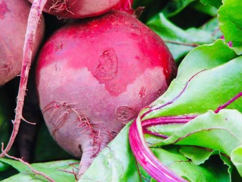 Jone's beets.jpg