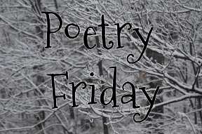 Poetry Friday--snow