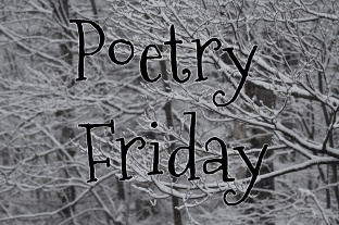 Poetry Friday--snow.jpg